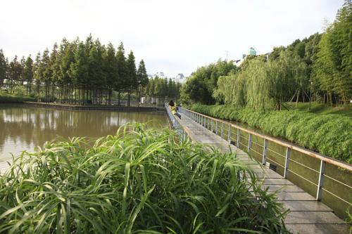 滨水游憩绿地设计