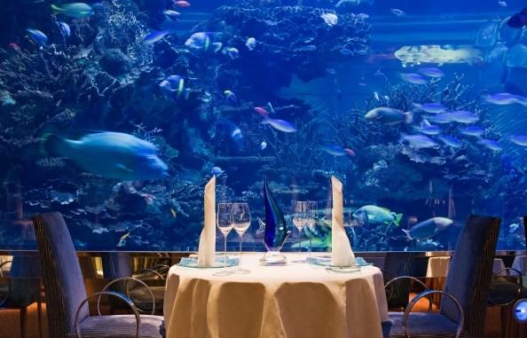 壁纸 海底 海底世界 海洋馆 水族馆 594_381