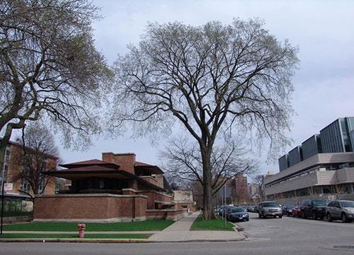 芝加哥罗比住宅
