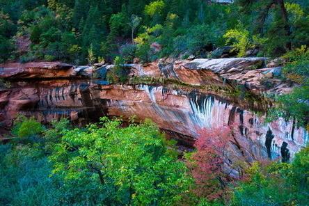国家公园介于自然保护区与风景名胜区之间